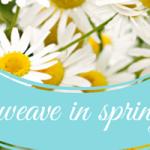 weave in spring
